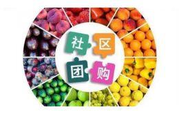 2020年,生鲜社区团购平台排名公布