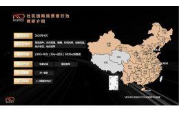 重磅|2019-2020年中国快消品社区团购行业报告