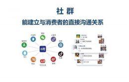2019社交电商十大平台