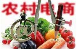 农村电商振兴九江乡村,拓宽农产品线上销售途径