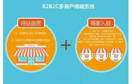 浅谈B2B2C电子商城的发展趋势